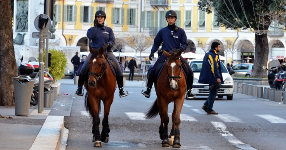 Security at carnival in Nice