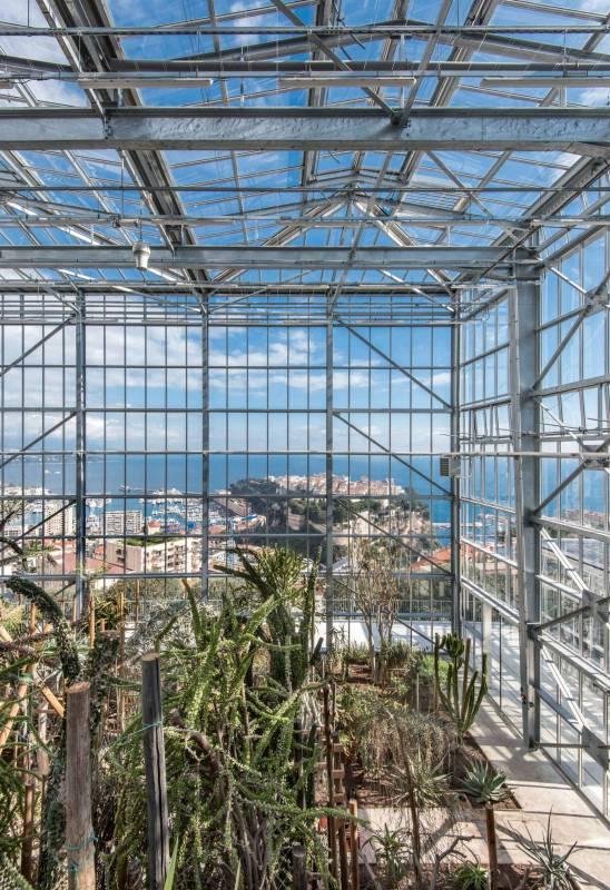"""""""glass palaces"""" on Boulevard du Jardín Exotique"""