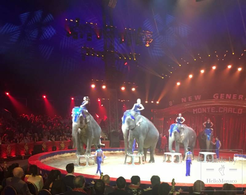 THE NEW GENERATION CIRCUS CONCLUDES TO WILD APPLAUSE