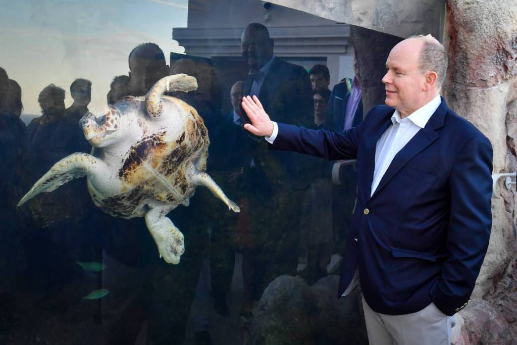 Prince Albert inaugurates New Home for Sea Turtles
