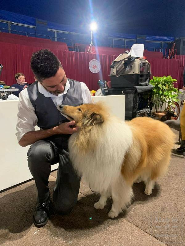 International Dog Show 2019: a «hairy» Boom in Monaco