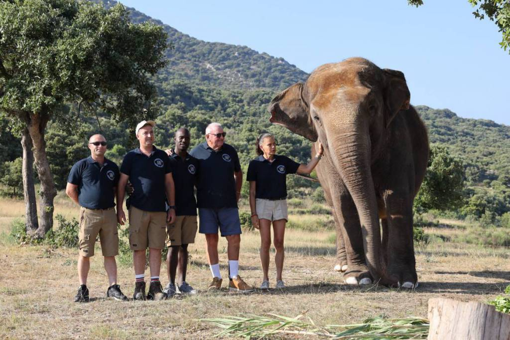 "Princess Stephanie Celebrates the Sixth Anniversary of the ""Baby and Nepal association"" to Protect Threatened Elephants"