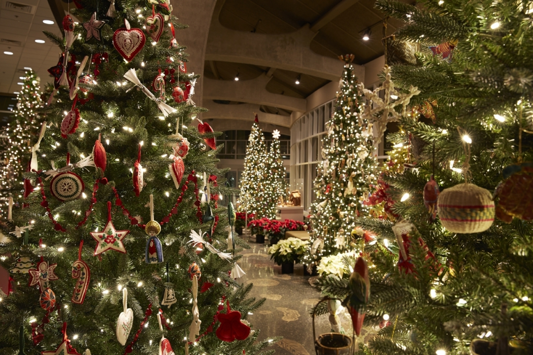 Exhibition of Christmas Trees