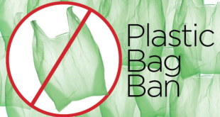Ban on single-use plastic bags