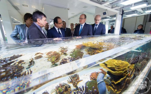 Photo of The Scientific Centre of Monaco receives new donations