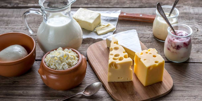 full fat versus high fat dairy
