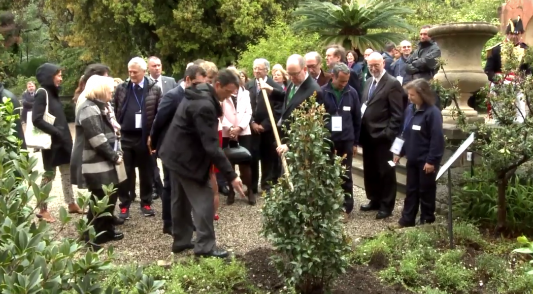 Prince Albert II plants tree