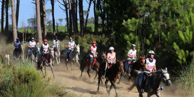 Equestrian Endurance Italy