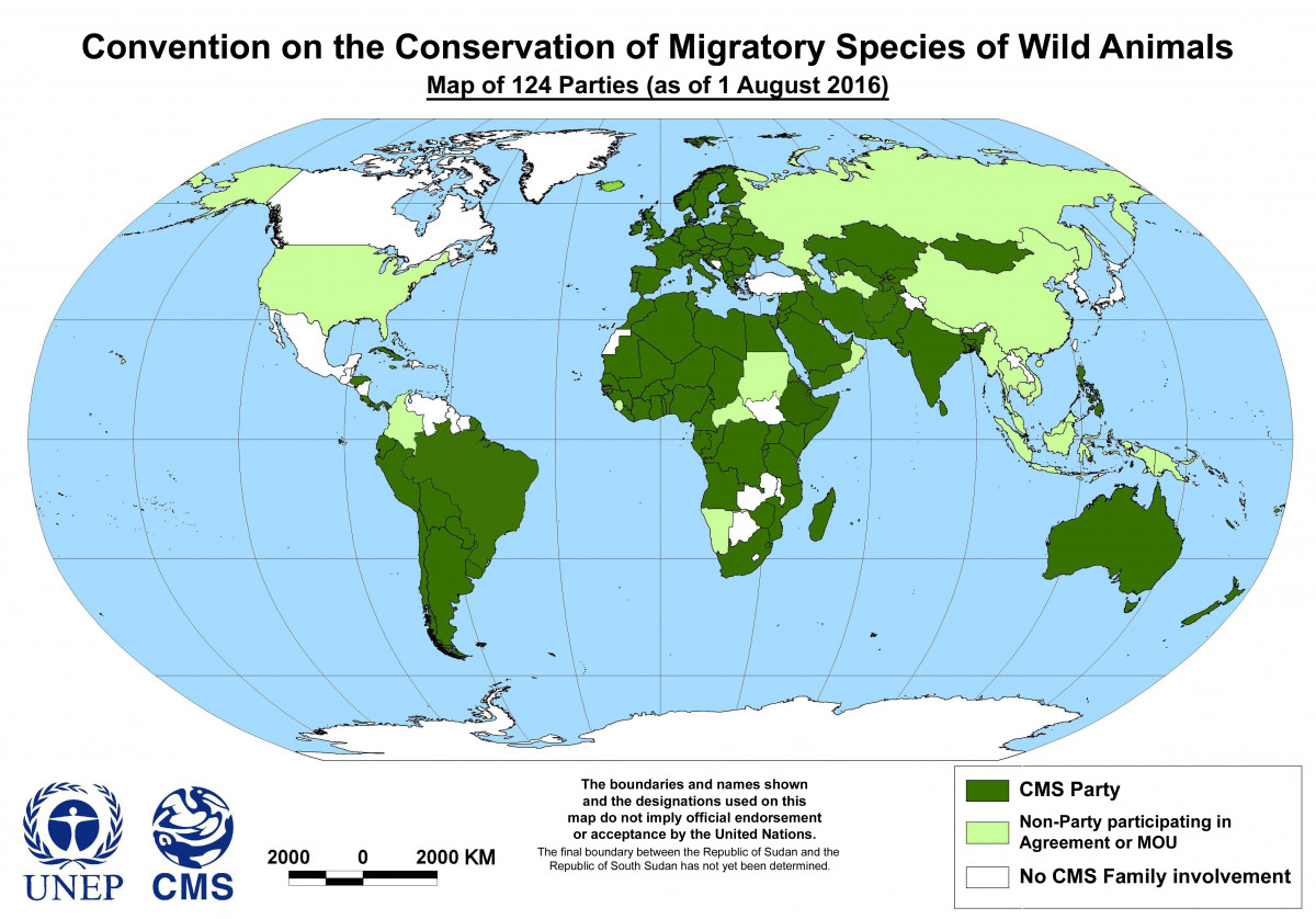 Photo of Monaco Participates in 12th Conference Related to Migratory Species Conservation