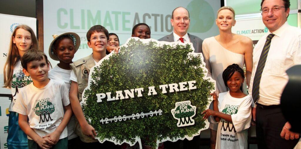 Plant a tree