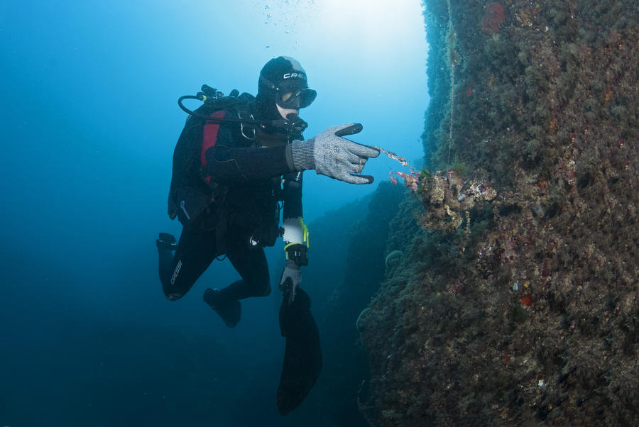 Photo of Scuba Divers clean the depths of the Fontvieille Port and other Monaco news
