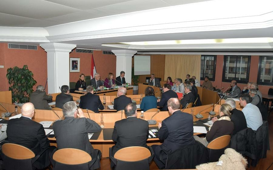 Photo of Marie-Pierre Gramaglia addresses members of Economic and Social Council
