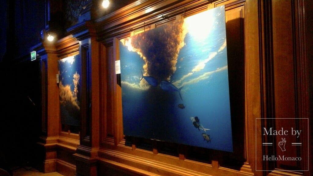 Photo of Green Economy turns Blue to protect the marine biodiversity