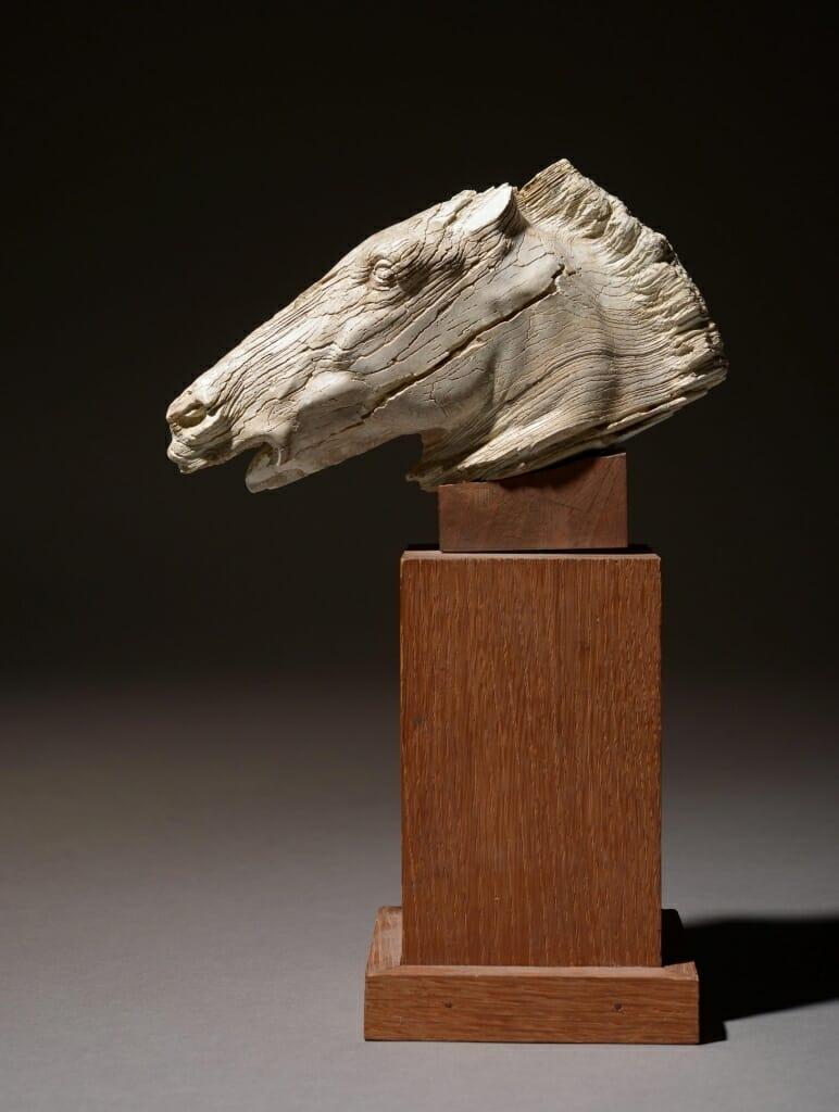 HVMC Horse Head