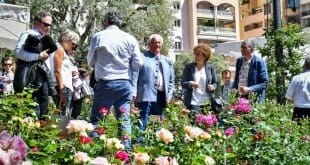 Monaco's 4th International Rose Competition