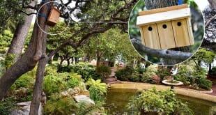 Nest Box Monaco