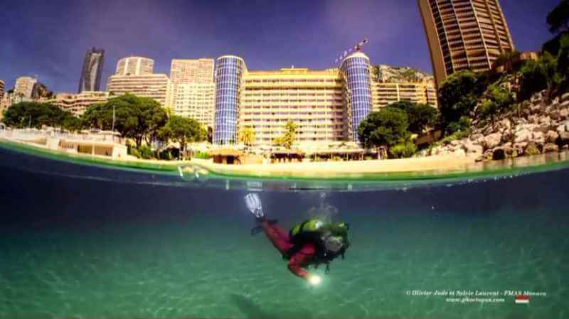 Exhibition: underwater photographs at the Méridien Hotel