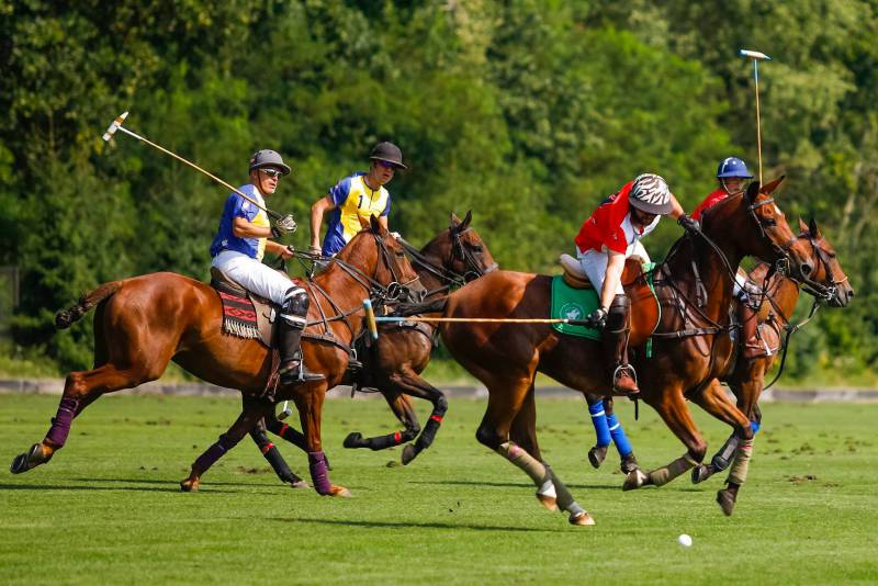 Photo of Spectacular Monte -Carlo Polo Trophy Designed to Capture Hearts