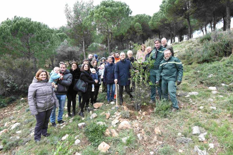 Photo of 950 Trees Planted for every New Baby in Monaco