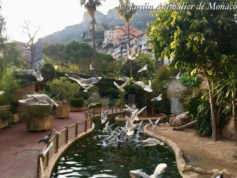 Zoological Garden of Monaco (Le Jardin Animalier)