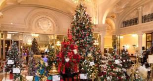 Фестиваль и аукцион новогодних ёлок