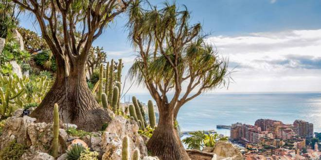 Protecting Endangered Species at Monaco's Exotic Garden