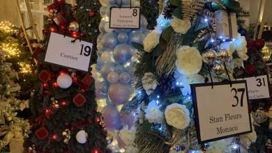 Photo of Christmas Trees Auctioned at Hotel de Paris Raise a Record and other Monaco news