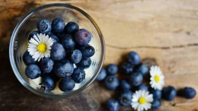Photo of Stay Healthy: 10 Superfoods to boost Brain Power