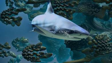 Photo of Monaco's Oceanographic Museum Verifies a Shark Spotted in Close-by Coastal Waters