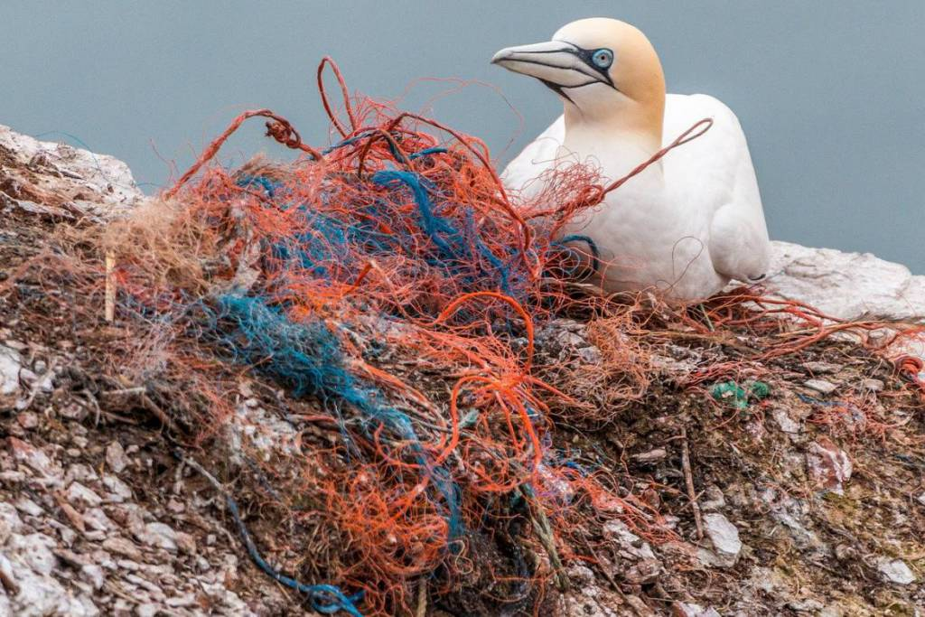 BeMed launches Calls to Action to Reduce Plastic