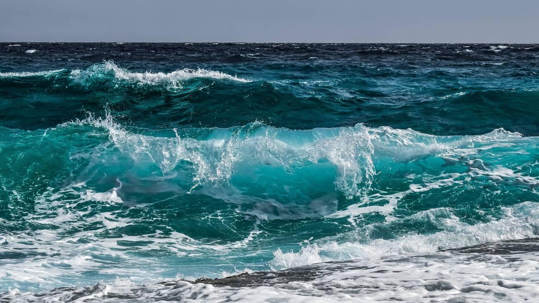 Oceanographic Institute seeks Donations