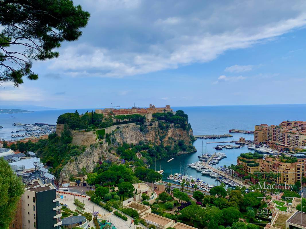 Monaco view.