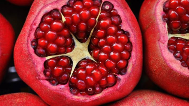 Photo of Keeping Monaco Healthy: The Top 10 Anti-aging Foods