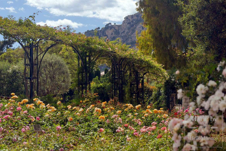 The Fontvieille Landscape Park and the Princess Grace Rose Garden