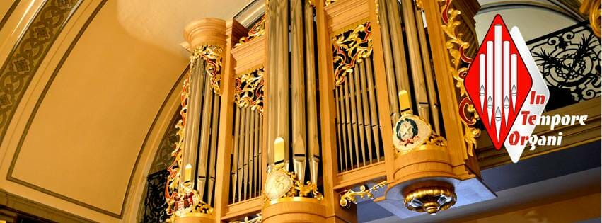 6th International Organ Cycle