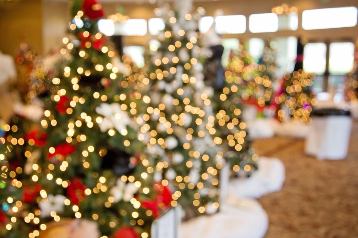Help Light up Monaco's Christmas Tree