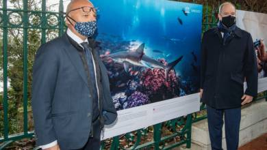 Photo of New photo exhibition along St-Martin gardens in Monaco inaugurated by Prince Albert II