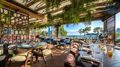 Photo of Take a culinary journey to rediscover COYA Monte-Carlo