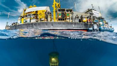 Photo of Gombessa 'Mission Cape Corse': news from the deep sea