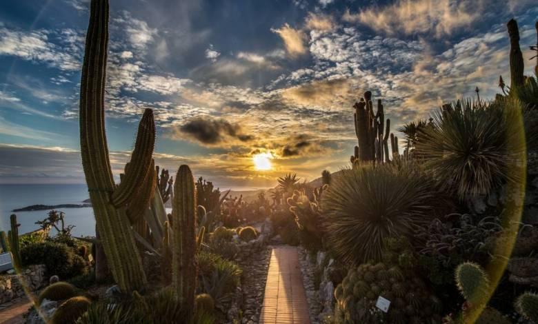 The Exotic Garden of Èze-Village