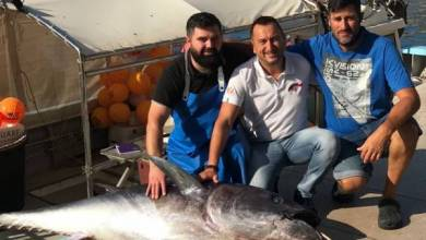 Photo of Incredible catch: a fisherman from Monaco caught a tuna weighing 113 kg