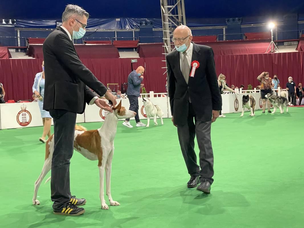 Monaco International Dog Show